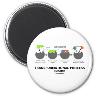 Transformational Process Inside (Enzyme Substrate) Refrigerator Magnet