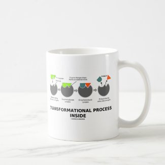 Transformational Process Inside (Enzyme Substrate) Mugs