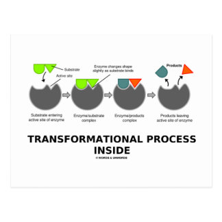 Transformational Process Inside (Enzyme Substrate) Postcard