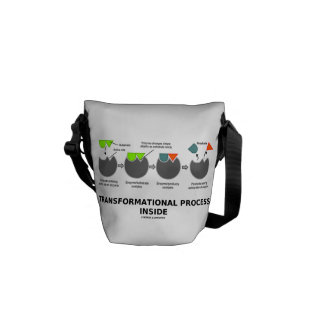 Transformational Process Inside Induced-Fit Model Courier Bag