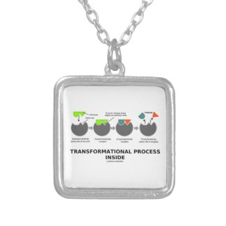 Transformational Process Inside Induced-Fit Model Jewelry