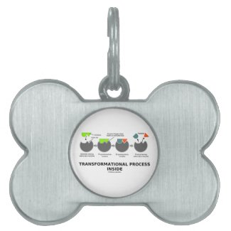 Transformational Process Inside Induced-Fit Model Pet Name Tags