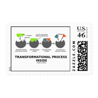 Transformational Process Inside Induced-Fit Model Postage Stamp