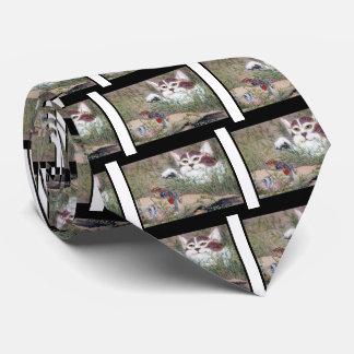 Transforming cat tie