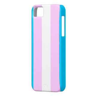 Transgender flag case