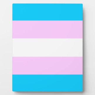 Transgender flag display plaques