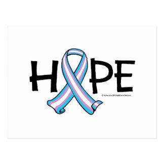 Transgender HOPE 2 Postcard