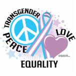 Transgender PLC Photo Sculpture