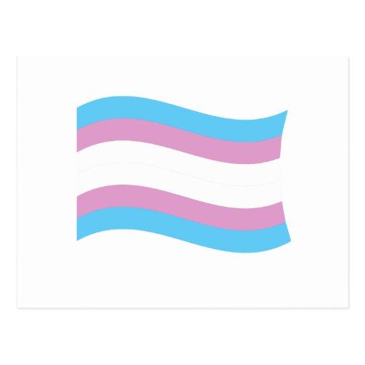 Transgender Pride Banner Postcard