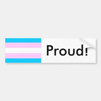 Transgender Pride Flag Bumper Sticker