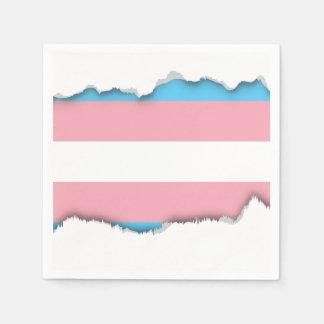 Transgender Pride Flag Napkin