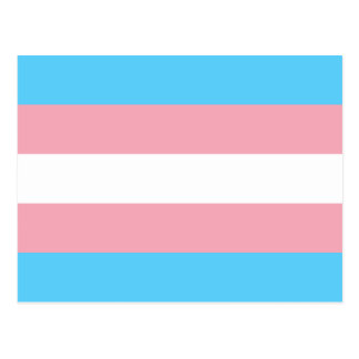 Transgender pride flag postcard