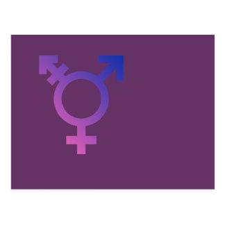 Transgender Symbol Postcard