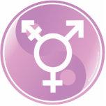 Transgender Ying Yang Photo Cut Out