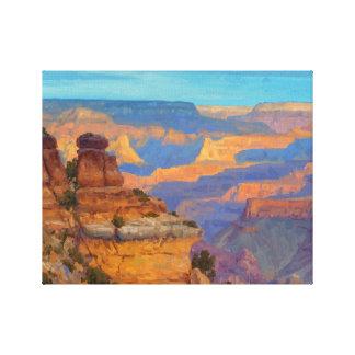 Transient Light Canvas Print