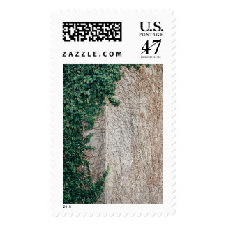Transition Takes Time Postage
