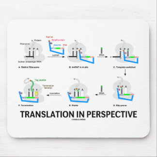 Translation In Perspective (tRNA Biology Protein) Mouse Pads