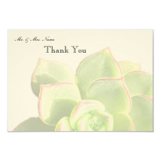 Translucent Green Succulent Thank You Card