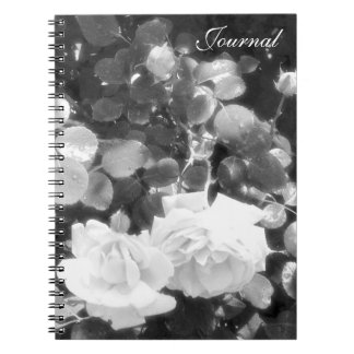 Translucent Roses-Journal-Black and White Note Books