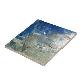 Transparent Gull and Clouds Modern Art Design Ceramic Tile