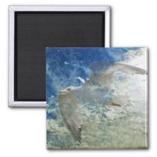 Transparent Gull and Clouds Modern Art Design Magnet