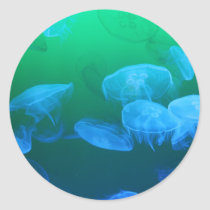 Transparent Jellyfish Classic Round Sticker