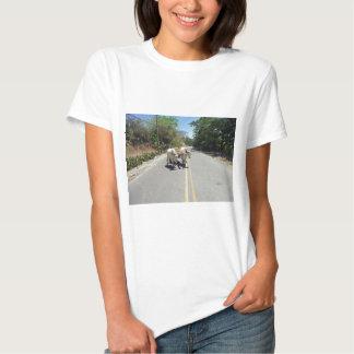 transporte del Caribe Camisas