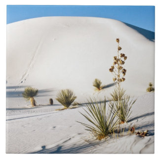 Transverse Dunes and Soaptree Yucca 2 Ceramic Tile