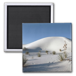 Transverse Dunes and Soaptree Yucca 2 Inch Square Magnet