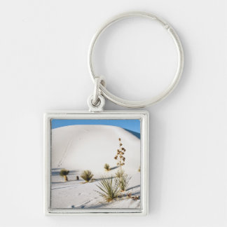Transverse Dunes and Soaptree Yucca 2 Keychain