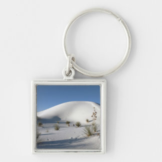 Transverse Dunes and Soaptree Yucca Keychain