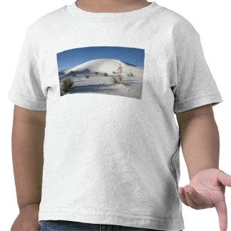 Transverse Dunes and Soaptree Yucca Tshirts