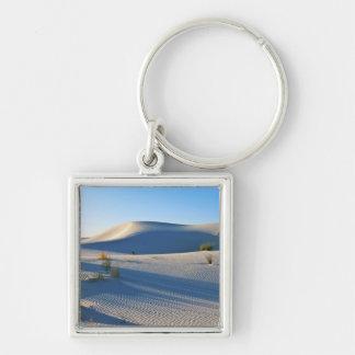 Transverse Dunes, Yucca, Early Morning Light Keychain