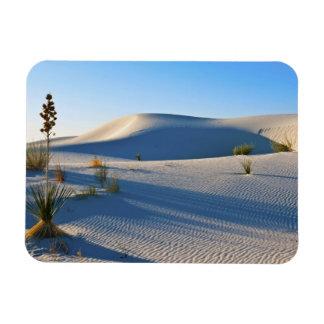 Transverse Dunes, Yucca, Early Morning Light Rectangular Photo Magnet