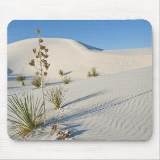 Transverse Dunes, Yucca, shadows Mouse Pad
