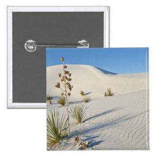 Transverse Dunes, Yucca, shadows Pinback Button