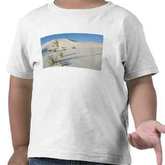 Transverse Dunes, Yucca, shadows Shirts