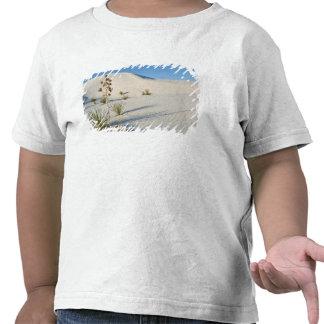 Transverse Dunes, Yucca, shadows T Shirts