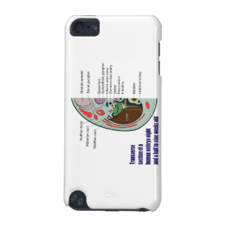 Transverse Section of Human Embryo 9 Weeks Old iPod Touch 5G Case