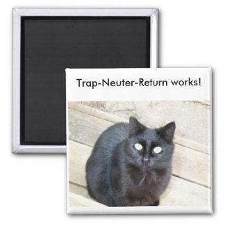 Trap-Neuter-Return magnet