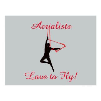 Trapeze Swing Aerialists Postcard
