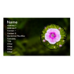 Trapped Double-Sided Standard Business Cards (Pack Of 100)