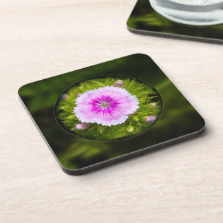 Trapped Drink Coasters