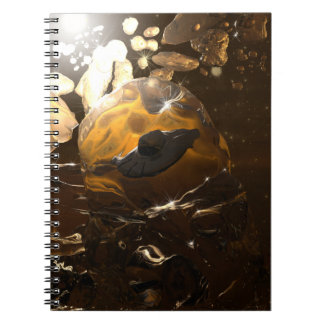 Trapped in Amber Notebook