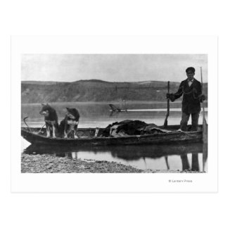 Trapper in Canoe with Hides and Dogs Alaska Postcard