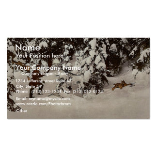 Trapping lynx, Russia classic Photochrom Double-Sided Standard Business Cards (Pack Of 100)