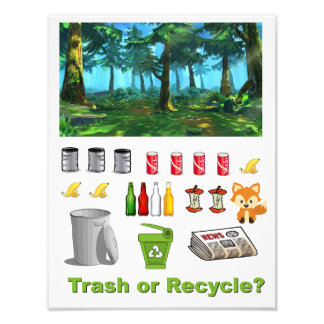 Trash Or Recycle Sorting Photo Print