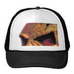 Trashow Skull Trucker Hat