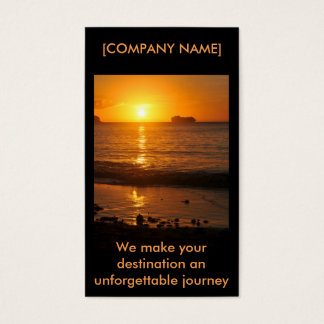Travel agent cruise business card