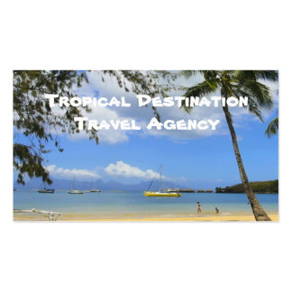 Travel Agent Double-Sided Standard Business Cards (Pack Of 100)